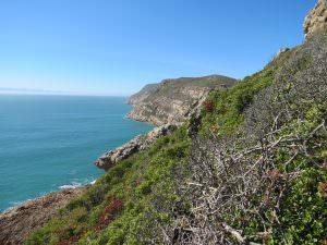 Hiking the Robberg Nature Reserve, a highlight of the Garden Route