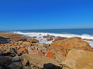 Robberg Nature Reserve - The Point Rocks