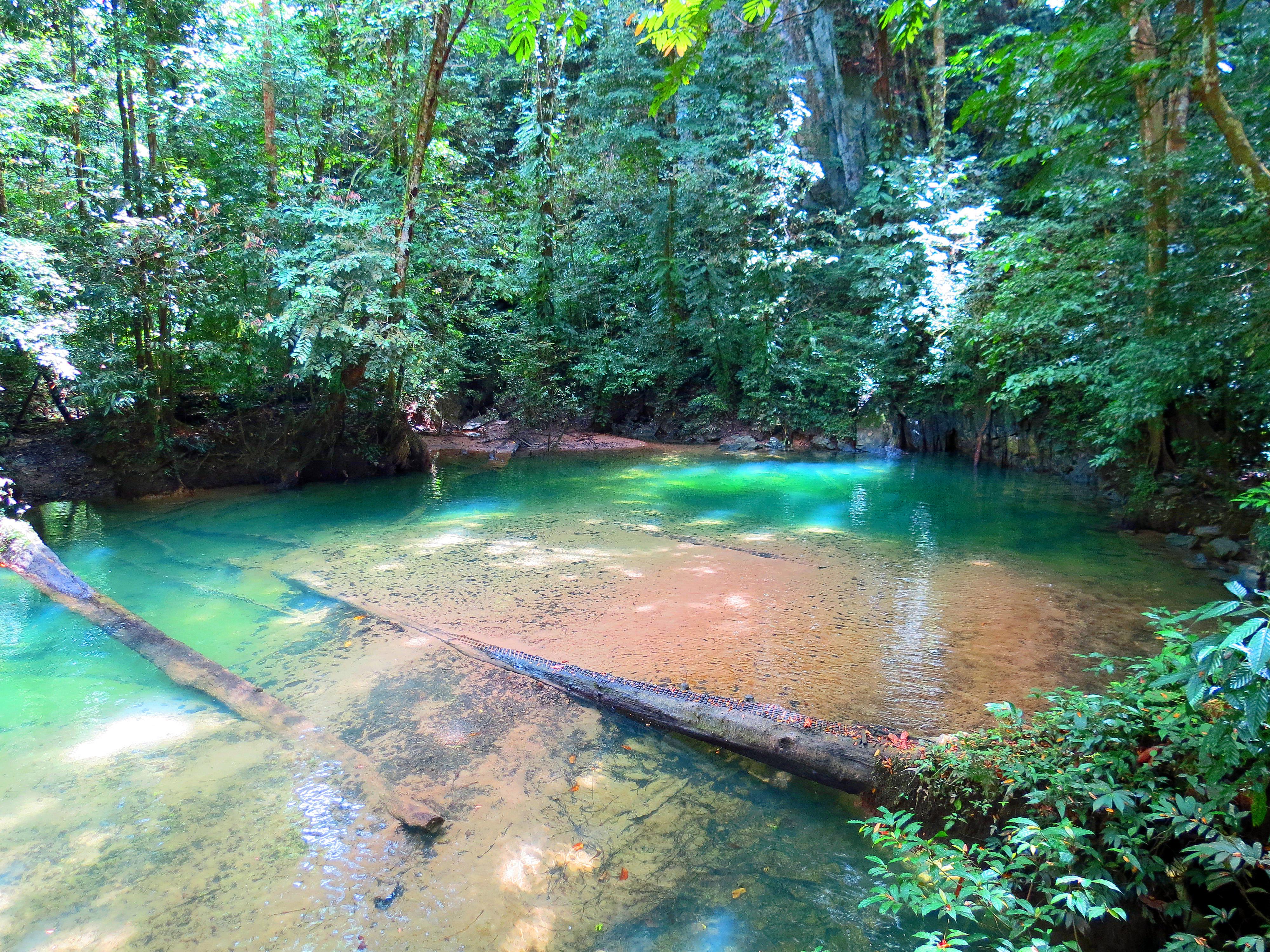 Rondreis Borneo-Het afgelegen Gunung Mulu Nationaal Park in Maleisisch Borneo
