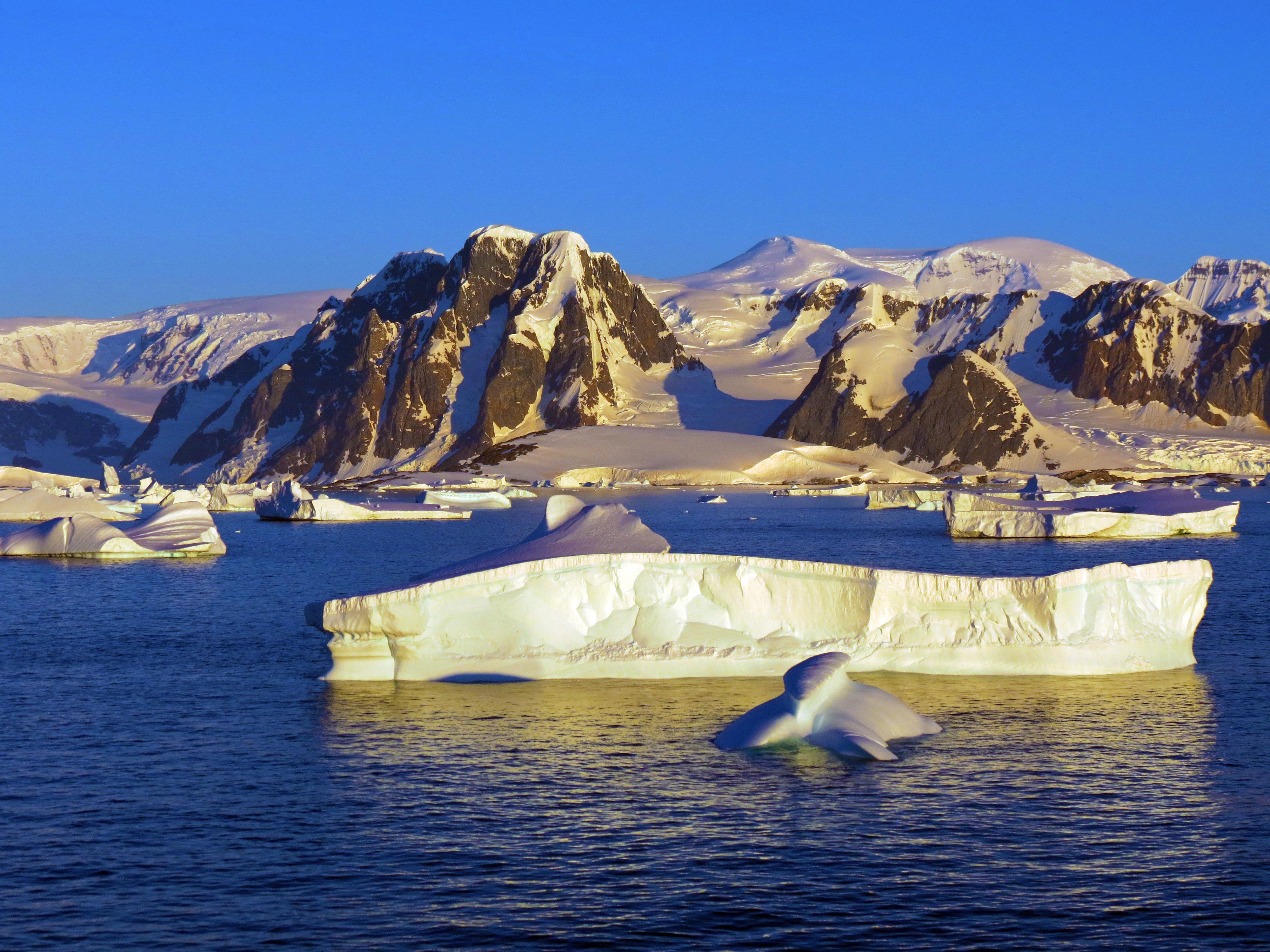 7 redenen waarom je absoluut met een cruise naar Antarctica moet gaan