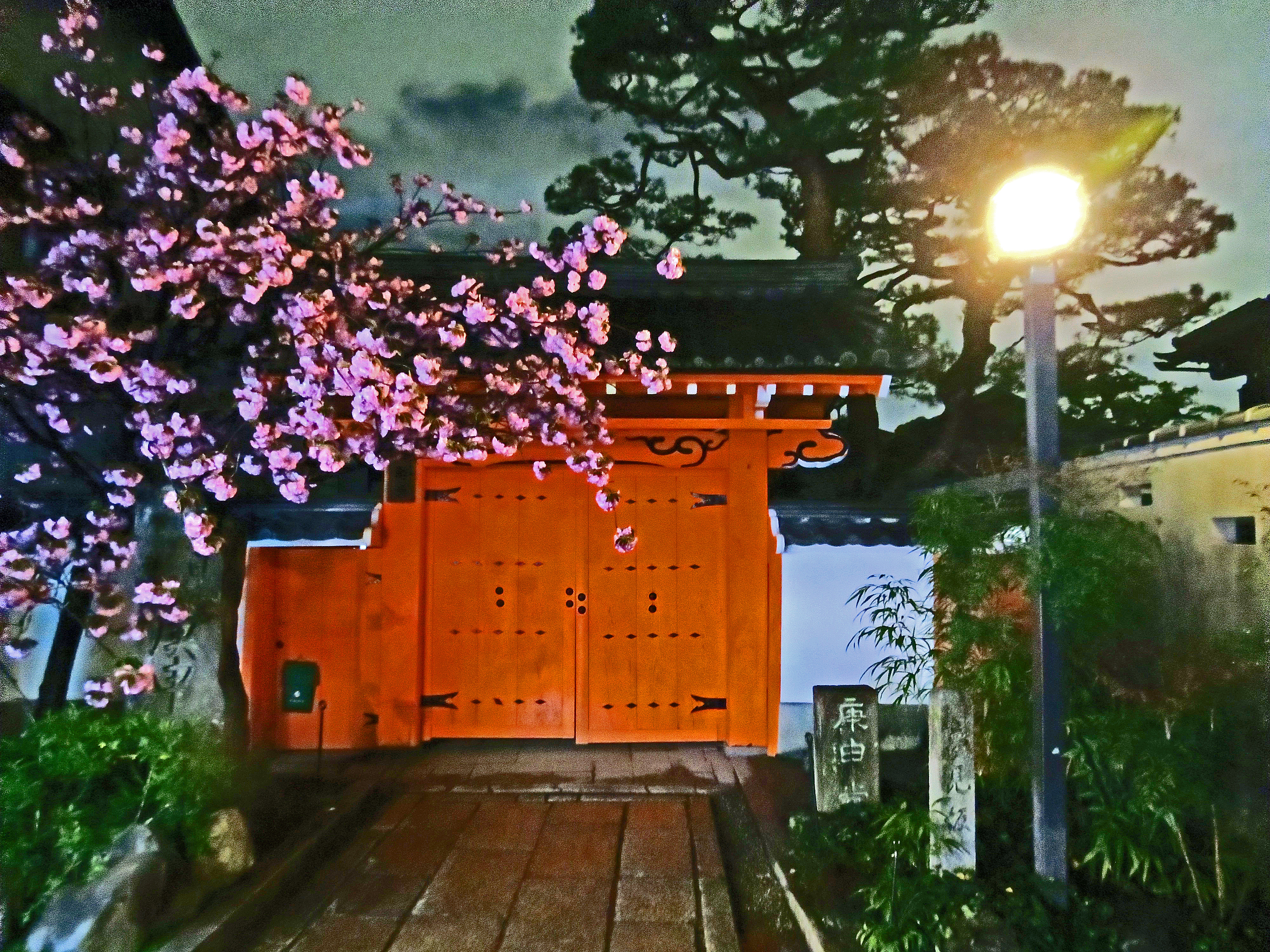 Things to do in Gion at night