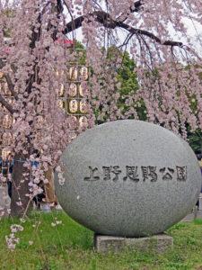 Ueno Garden