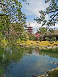 senso-ji Denbointeien Park - Tokyo