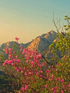 South Korea - Seoul - Bukhansan National Park