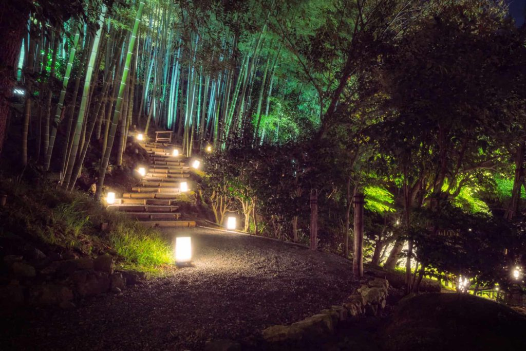 Kodai-Ji evening garden illuminations