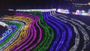 Boseong Tea Festival, South Korea