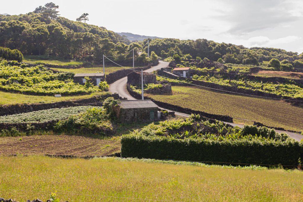 Discovering Azores Portugal with rental car
