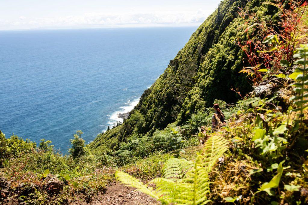 Trail Norte Pequeno São Jorge Azores Portugal
