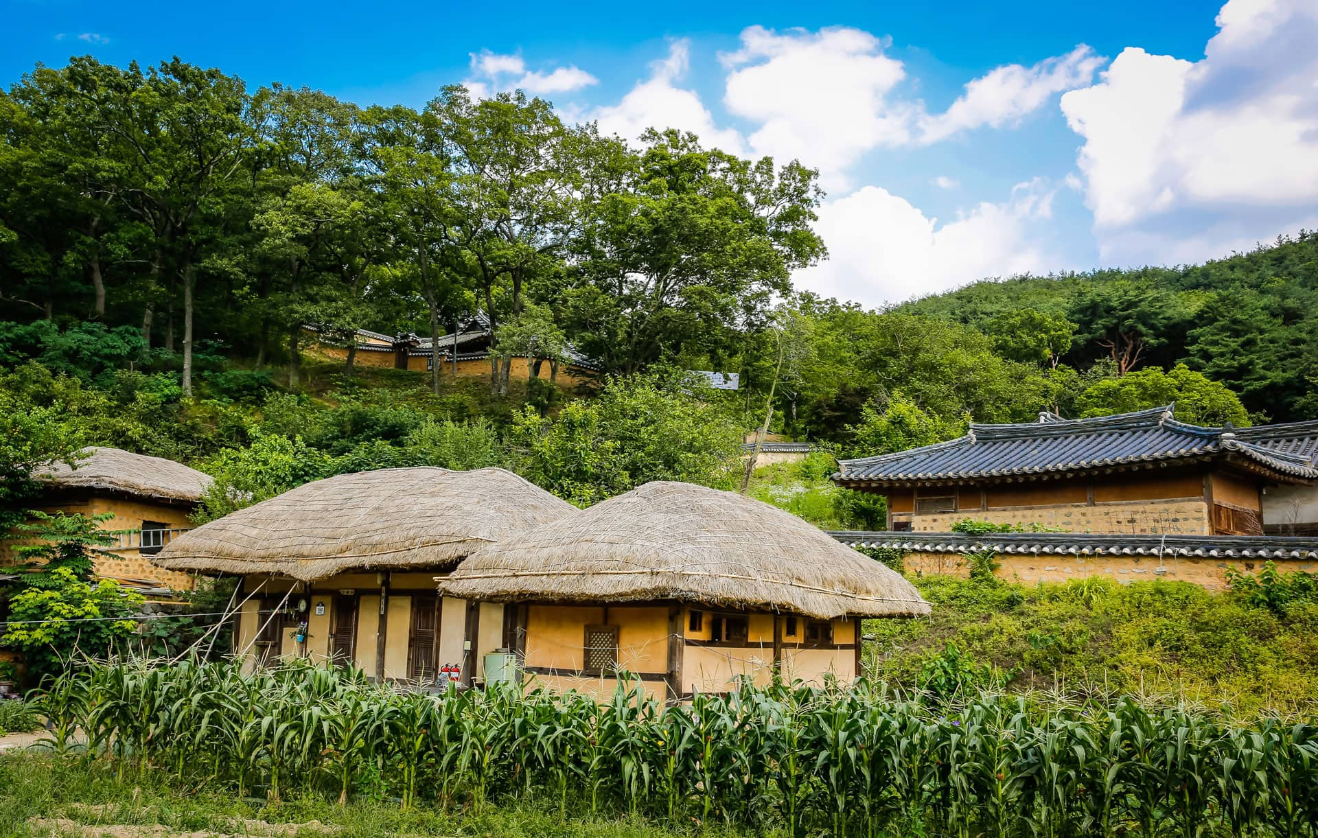 How to choose the best Korea tour package