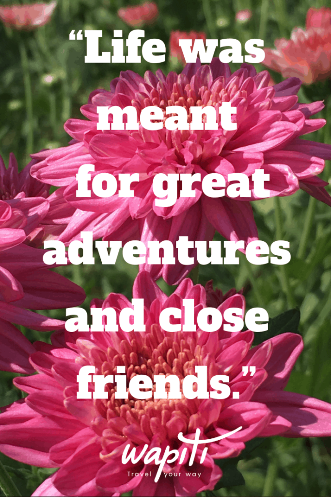 Travel quote: Life was meant for great adventures and close friends