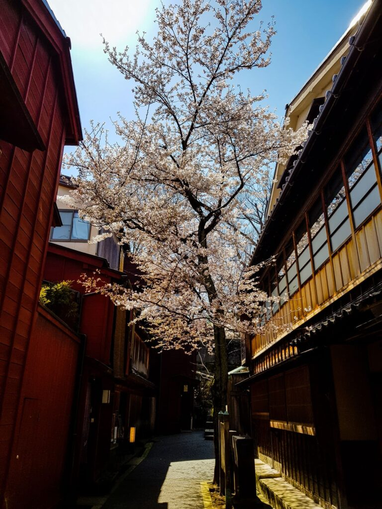 A quaint alleyway in Kanazawa