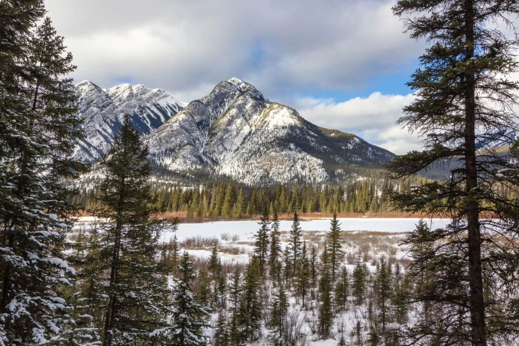 Marsh Loop in Banff in the Winter