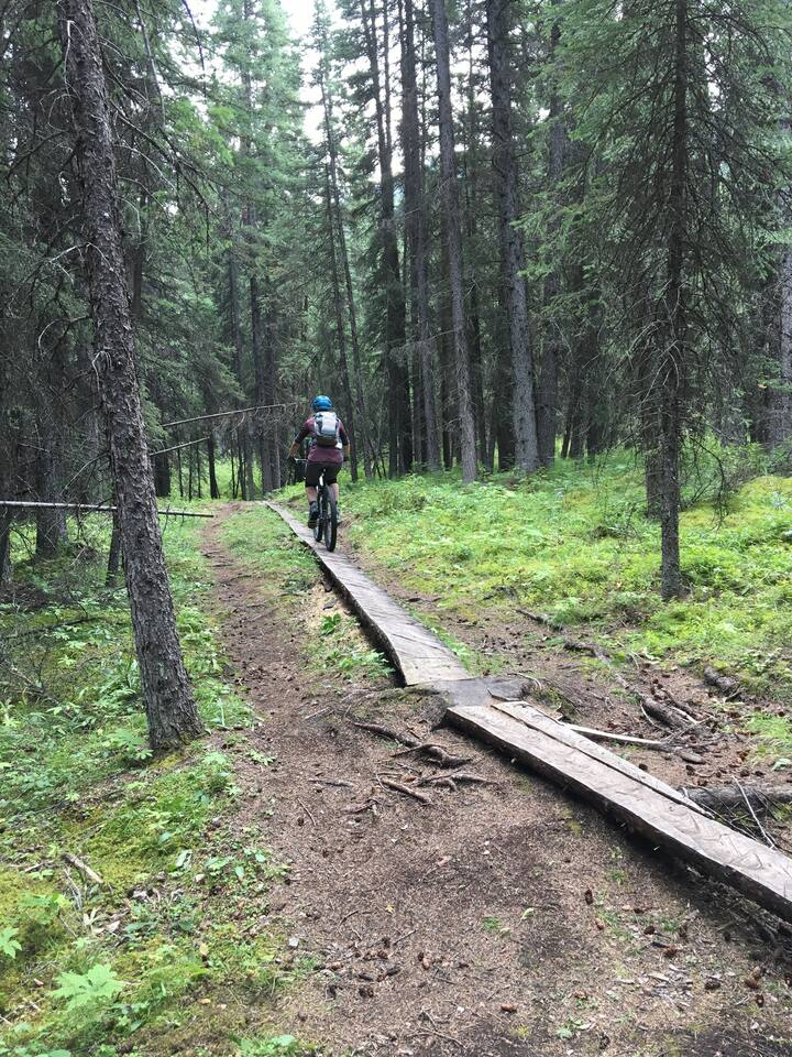 A mountain bike tour is one of the best Airbnb experiences in Canmore