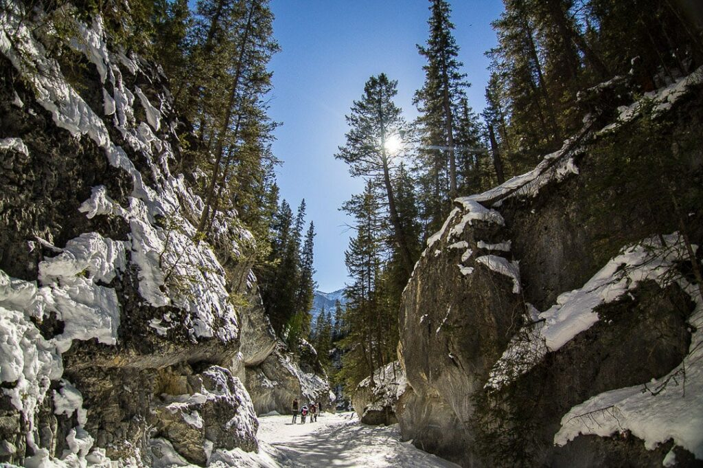 Grotto Canyon is one of the best hikes in Canmore in Winter