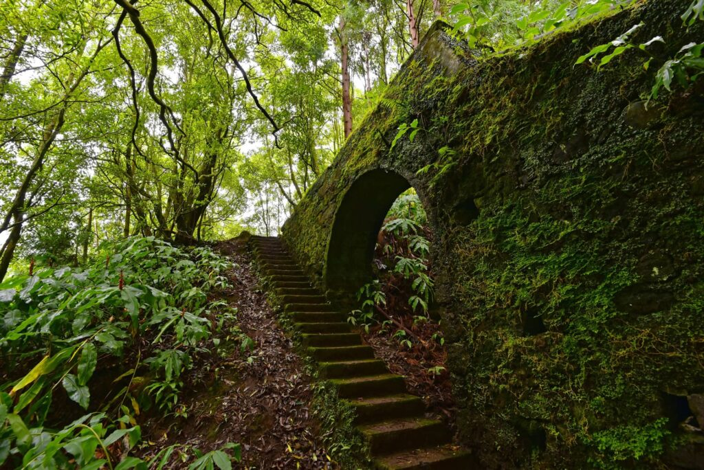 An old overgrown aqueduct that you will pass during the Janela do Inferno hike