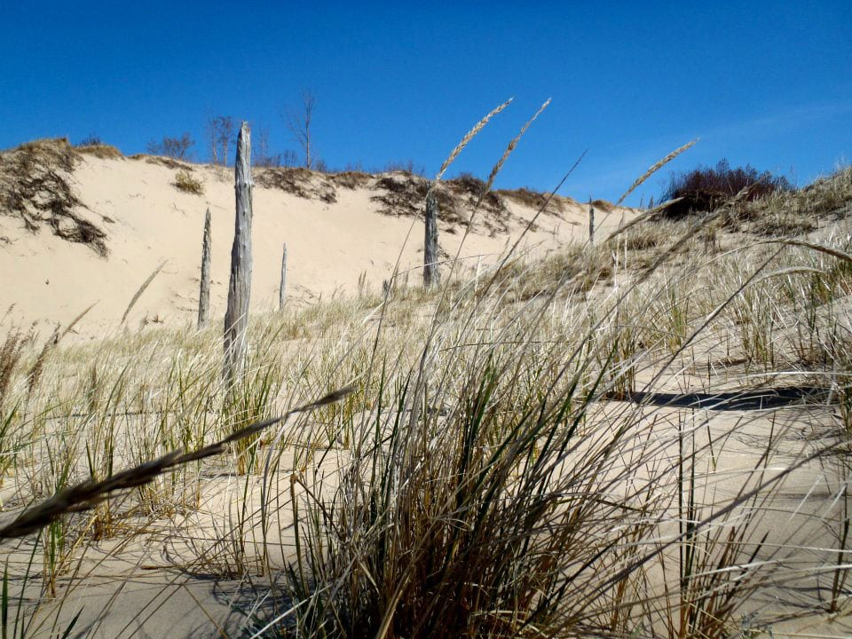 Old Indian Trail in Sleeping Bear Dunes National Lakeshore