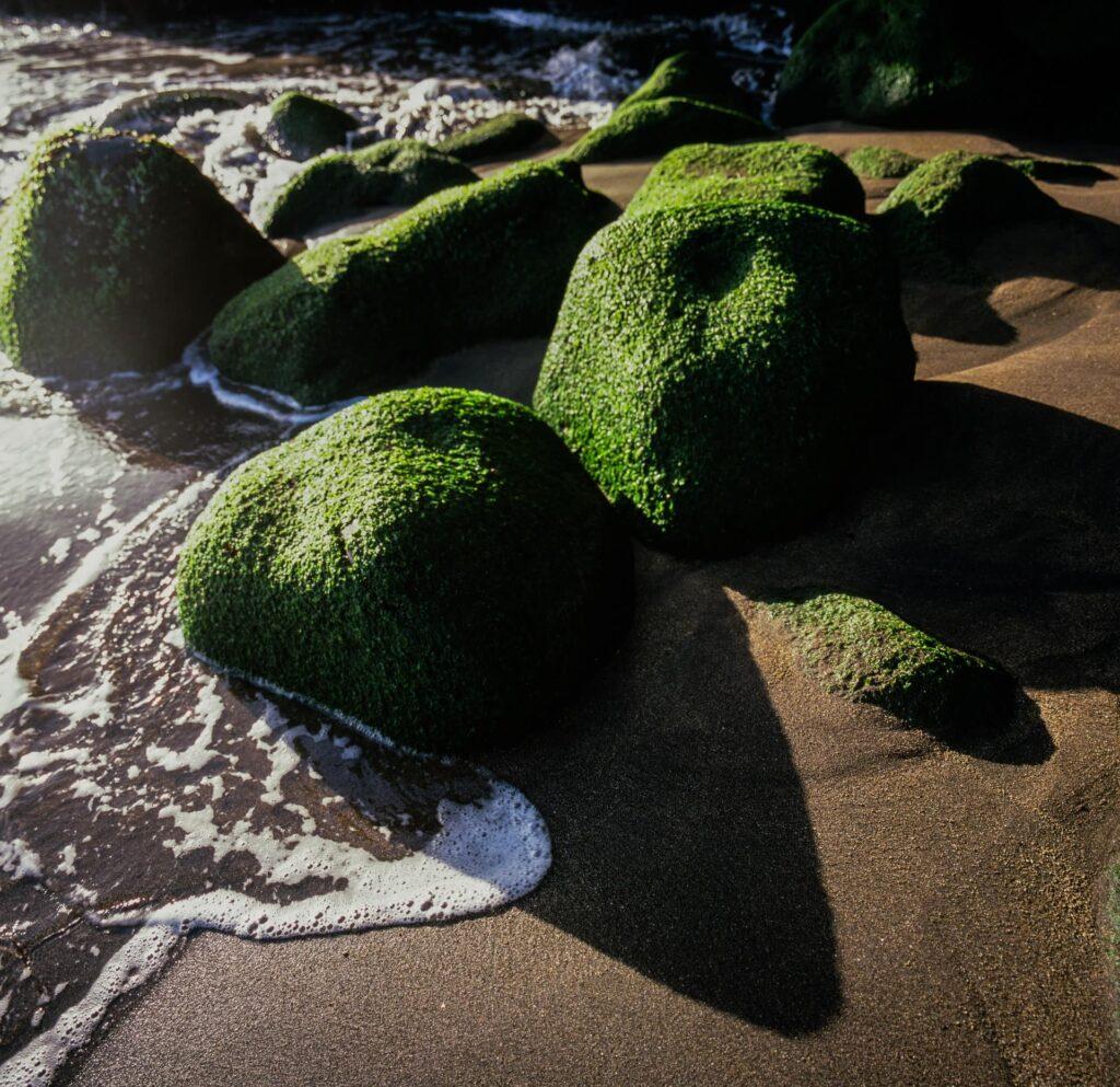 Rocks on Caloura beach on São Miguel in the Azores