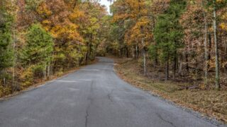 The access road to Ferne Clyffe State Park, one of the best state parks in Illinois