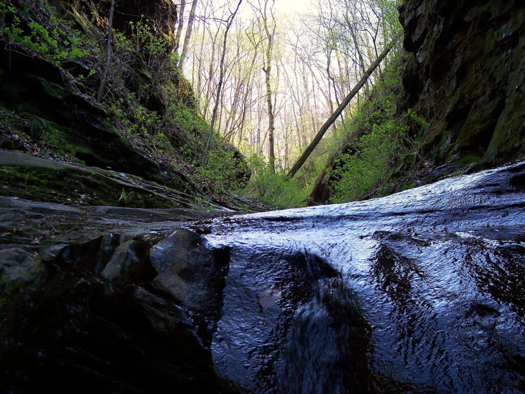 Little Grand Canyon is another great hike in the Shawnee National Forest in Illinois